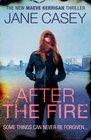 After the Fire (Maeve Kerrigan, Bk 6)