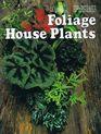 Foliage House Plants