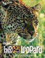 Big Cat Diary Leopard