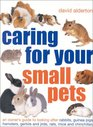 Caring for Your Small Pets