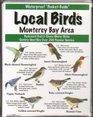 Local Birds of the Monterey Bay Area
