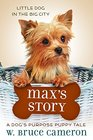 Max's Story A Dog's Purpose Puppy Tale