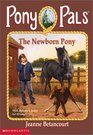 The Newborn Pony (Pony Pals, Bk 28)
