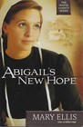 Abiigail's New Hope (Wayne County, Bk 1)