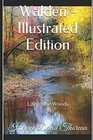 Walden - Illustrated Edition Life in the Woods