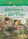 Leprechaun in Late Winter