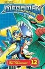 Megaman Nt Warrior 12