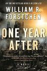 One Year After A Novel