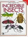 Incredible Insects (Ranger Rick's Naturescopeseries)