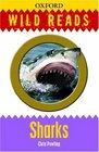 Sharks Wild Reads