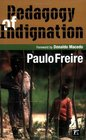 Pedagogy Of Indignation (Series in Critical Narritive)