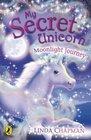 Moonlight Journey (My Secret Unicorn)