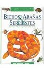 Bichos aranas y serpientes / Bugs Spiders and Snakes