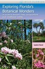 Exploring Florida's Botanical Wonders A Guide to Ancient Trees Unique Flora and Wildflower Walks