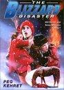 Blizzard Disaster