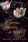 Cereus Blooms at Night