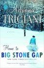 Home to Big Stone Gap (Big Stone Gap, Bk 4)