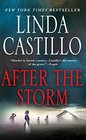 After the Storm (Kate Burkholder, Bk 7)
