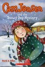 Cam Jansen and the Snowy Day Mystery (Cam Jansen, Bk 24)