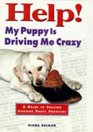 Help My Puppy is Driving Me Crazy  A Guide to Solving Common Puppy Problems