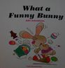 What a Funny Bunny