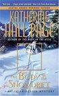 The Body in the Snowdrift (Faith Fairchild, Bk 15)