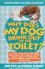 Why Does My Dog Drink Out of the Toilet Answers and Advice for All Kinds of Dog Dilemmas