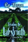 Treading The Labyrinth