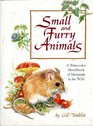 Small And Furry Animals A Watercolor Sketchbook of Mammals in the Wild