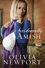 Accidentally Amish (Valley of Choice, Bk 1)
