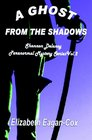 A Ghost from the Shadows (Shannon Delaney, Bk 2)