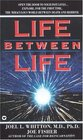 Life Between Life Scientific Explorations into the Void Separating One Incarnation from the Next