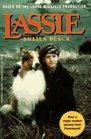 Lassie (Puffin High Flyer)