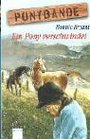 Ponybande 3 Ein Pony verschwindet