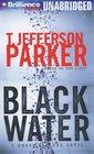 Black Water (Merci Rayborn)
