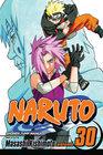 Naruto, Volume 30