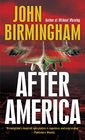After America (Disappearance, Bk 2)