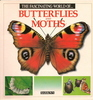 The Fascinating World of Butterflies and Moths