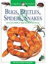 Complete Identifier Bugs Beetles Spiders Snakes