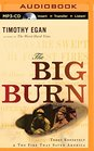 The Big Burn Teddy Roosevelt  the Fire That Saved America