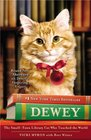 Dewey The SmallTown Library Cat Who Touched the World