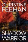Shadow Warrior (Shadow Riders, Bk 4)