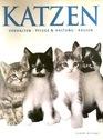 Katzen: Verhalten, Pflege & Haltung, Rassen