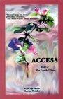 Access (Lorelei Files)