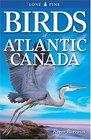 Birds of Atlantic Canada