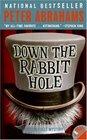 Down the Rabbit Hole (Echo Falls, Bk 1)