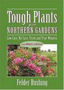 Tough Plants for Northern Gardens  Low Care No Care Tried and True Winners