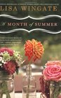 A Month of Summer (Blue Sky Hills, Bk 1)