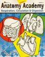 Anatomy Academy, Book 2 - Study Guide for Respiration, Circulation