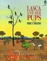 Lasca and Her Pups